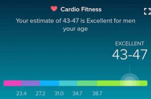 fitbit-cardio fitness for June 2017