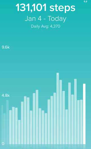 Fitbit Step Chart for January 2020