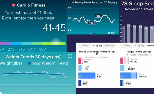 Fitbit Charts for April 2020