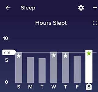 Hours Slept