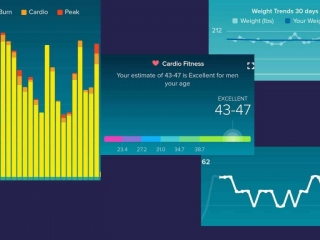 Fitbit charts for August 2017