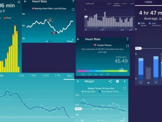 Fitbit charts for July 2018