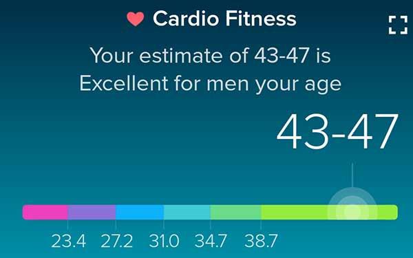 Fitbit Cardio Fitness Score