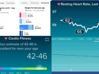 Fitbit charts for August 2020
