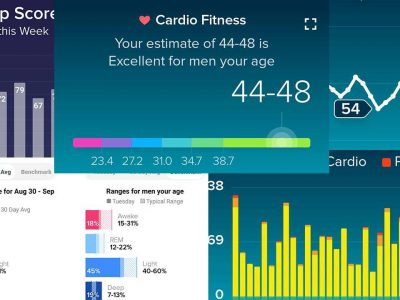 Fitbit Charts September 2020
