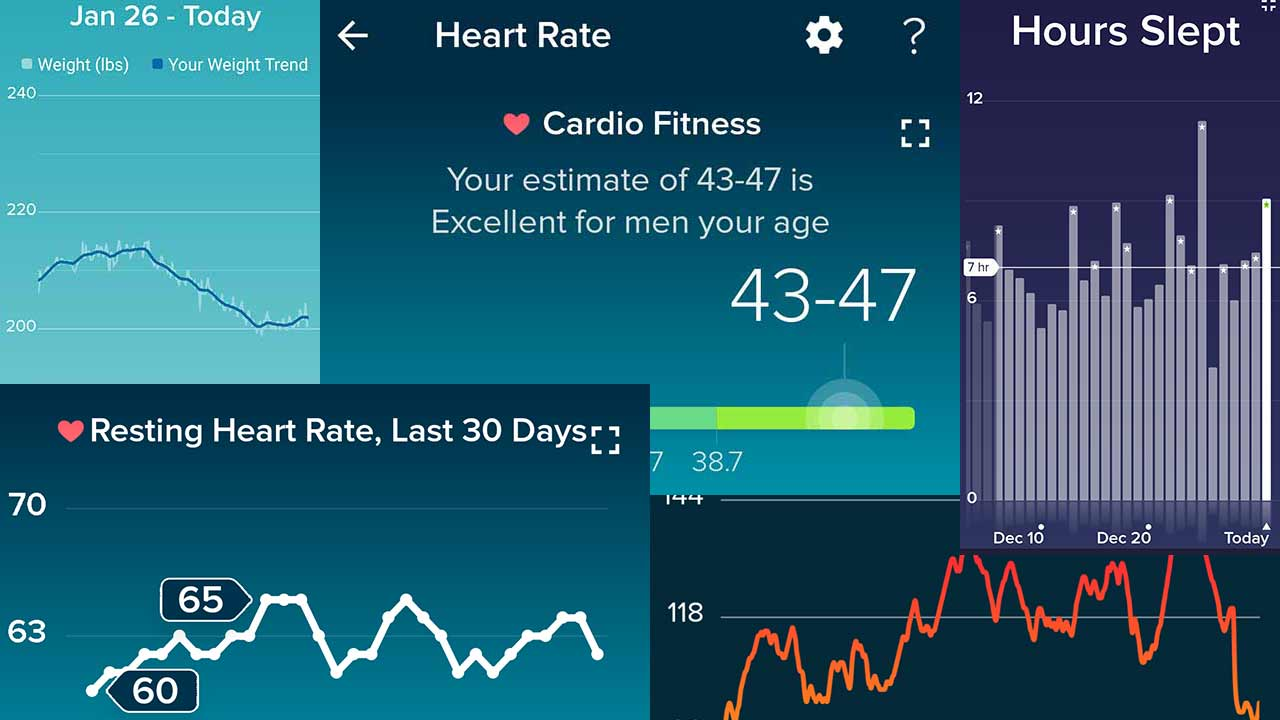 Fitbit charts for December 2020