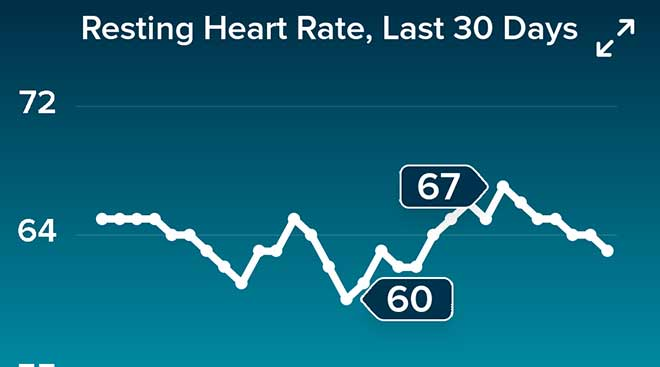 Resting Heart Rate for January 2021